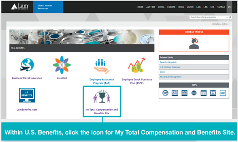 Lam Total Rewards example on My Total Compensation and Benefits web site